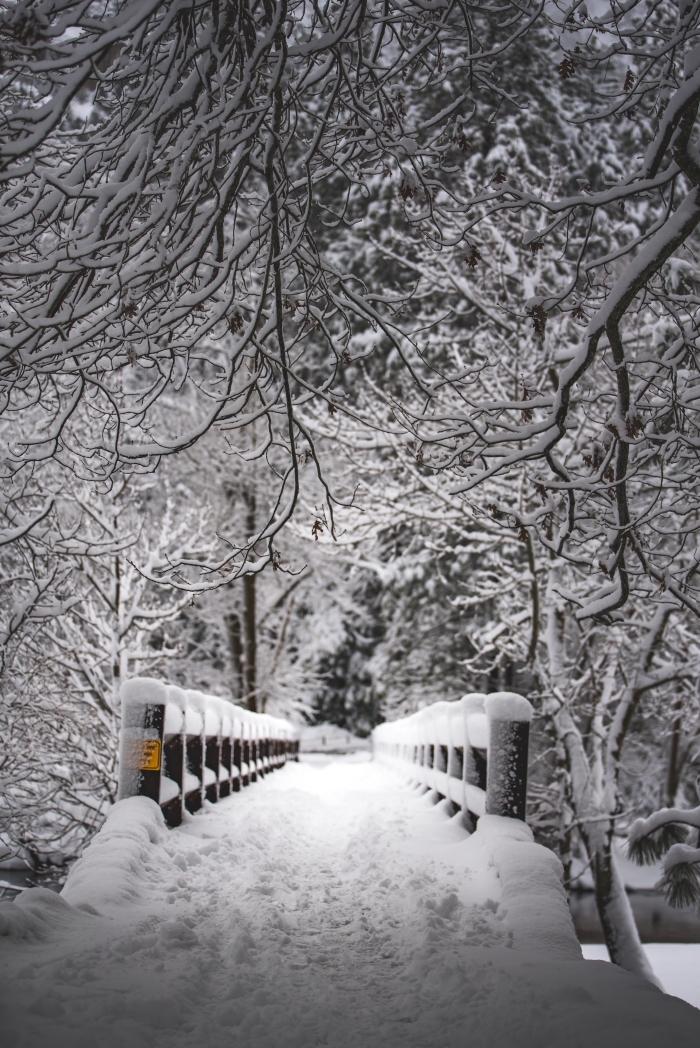 photo blanc et noir avec paysage d'hiver, photo pont dans une forêt aux arbres nus et enneigés, idée wallpaper verrouillage gratuit