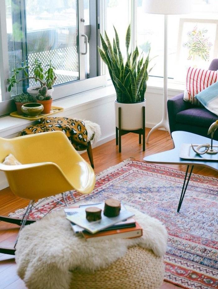 quelle plante d appartement, langue de belle mère ou sansevieria et autres petits cactus et succulents, chaise jaune design, pouf rotin, canapé violet et tapis oriental