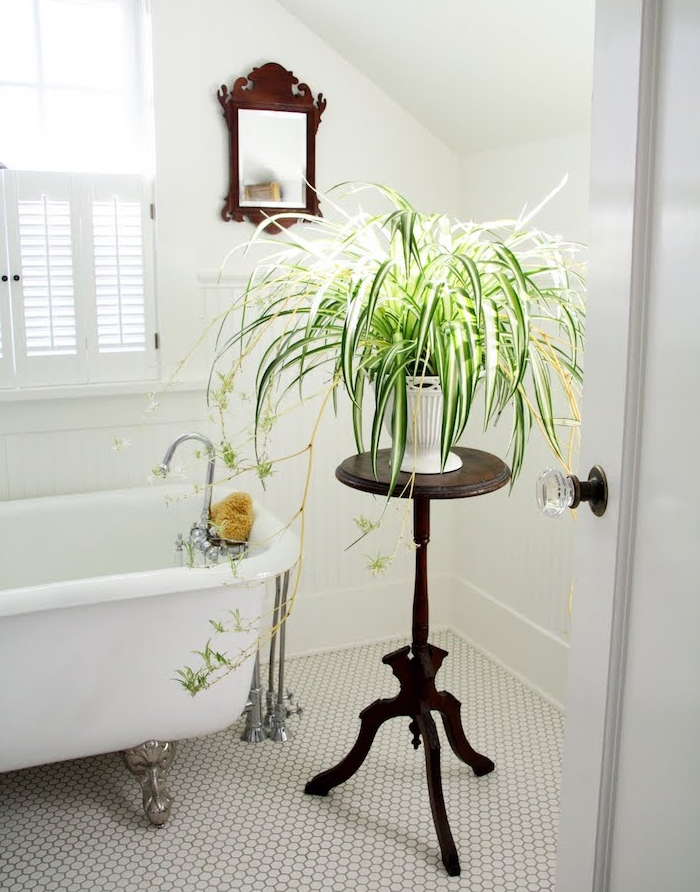 deco murs salle de bain blancs, baignoire blanche sur sol carrelage blanc, plante verte sur une table ronde bois