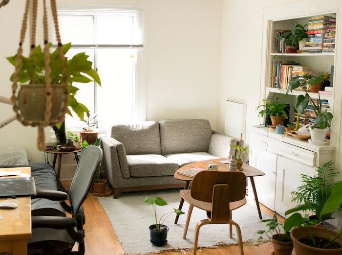 canapé gris, rangement meuble bibliothèque vintage blanc, plusieurs pots à poser et pots suspendus avec plantes vertes