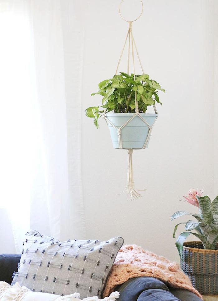 pot de fleur suspendu macramé et aechmea en pot, deco salon cocooning aux murs blancs et canapé bleu décoré de coussins et plaid rose