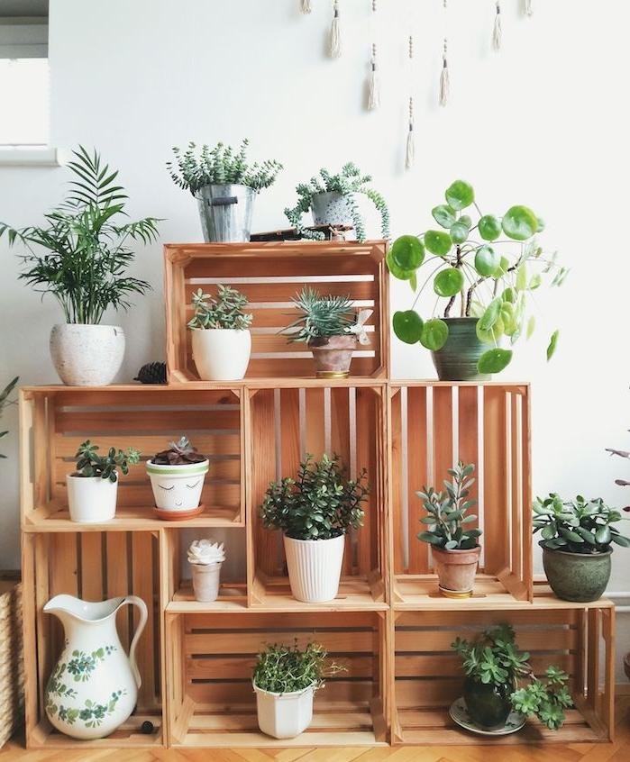 comment exposer ses plantes d intérieur vertes sur étagère cagette bois, plantes vertes en pot sur fond de mur blanc