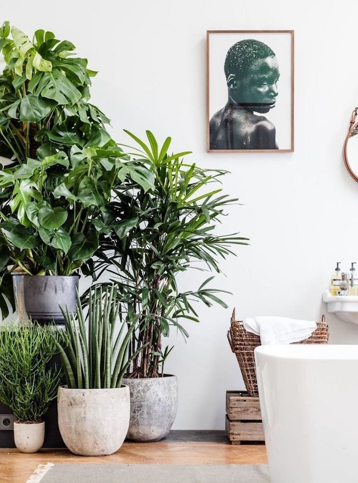 salle de bain avec baignoire blanche et de spots de plantes tropicales, deco africaine, portrait deco murale