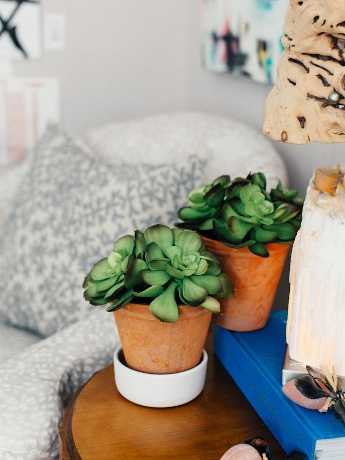 plantes grasses d intérieur rangées sur une table de service, lampe bois et fauteuil blanc avec coussin blanc et gris