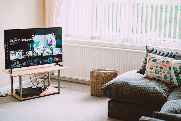 bien choisir sa télévision sur pied posée sur une étagère en face d un canapé gris foncé décoré de coussins motif exotique