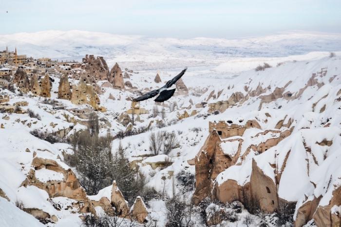 fond d écran gratuit pour ordinateur, photo de la nature hivernale et le vol d'un oiseau au-dessus d'un village dans les montagnes