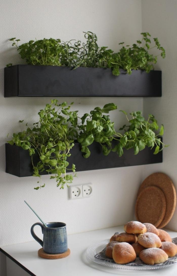 amenager une petite cuisine avec mini-potager d'herbes aromatiques cultivées dans des jardinières murales noires à côté de l'évier, une jolie tasse à café en céramique et son dessous de verre en liège