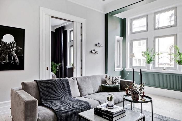 comment décorer un salon scandinave aux murs blanc et gris verdâtre avec meubles foncés, déco minimaliste dans un appartement