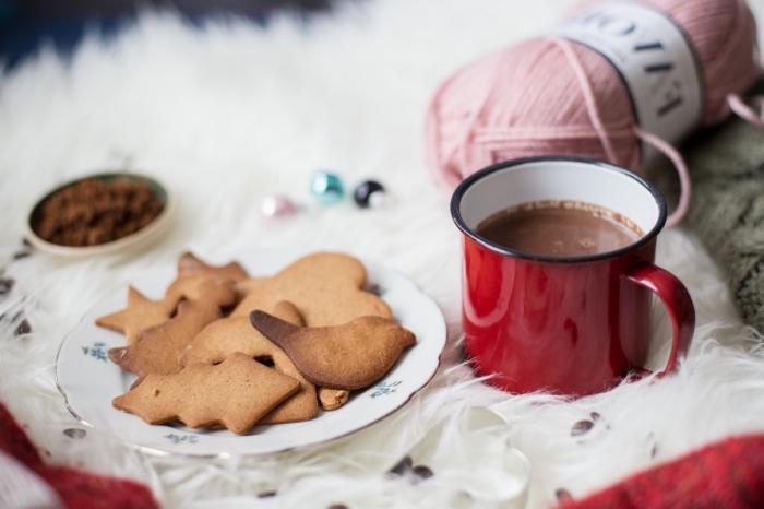 idée petit déjeuner père Noël avec cookies et boisson chaude fait maison, recette chocolat chaud cacao en poudre