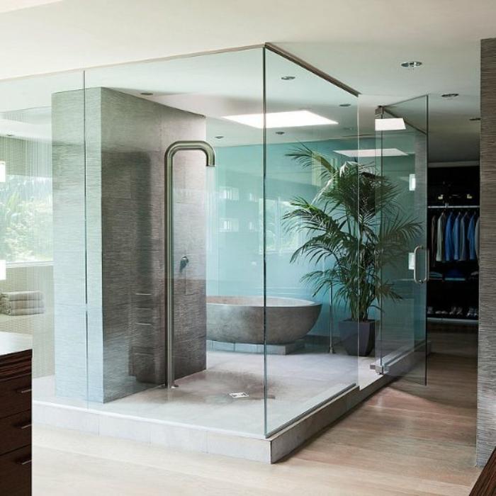 cabine de douche style zen, grande plante verte, douche style industriel, mur bleu, armoire dressing, baignoire ovale pierre