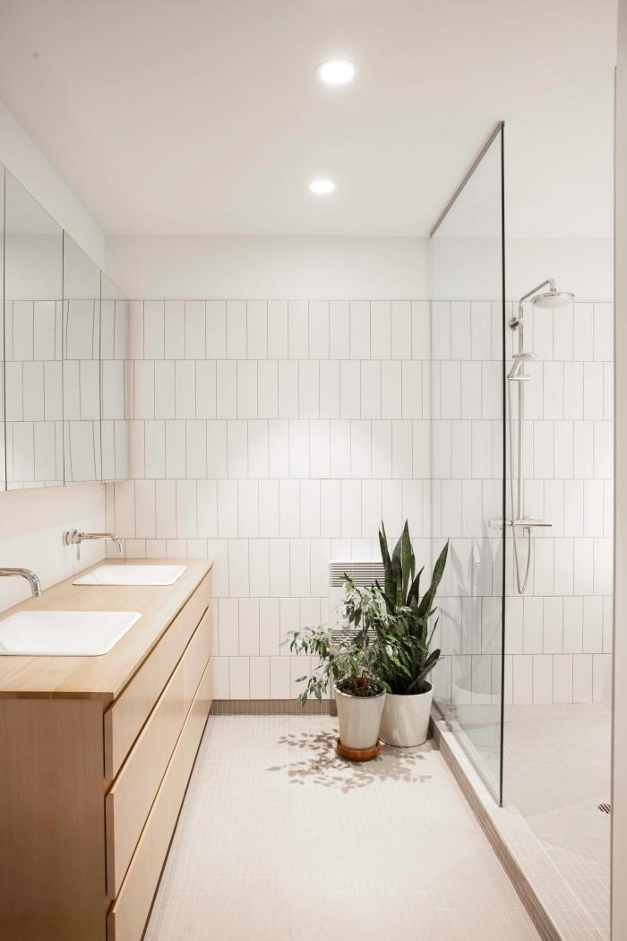 quel meuble sous vasque pour une petite salle de bain avec douche, exemple déco avec plantes dans une salle de bain sans fenêtre