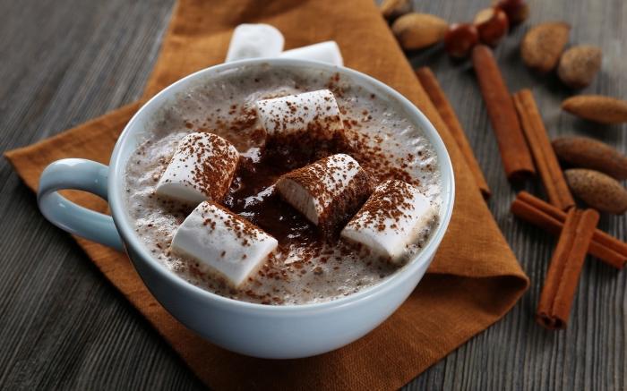 recette chocolat chaud au lait et cacao en poudre, mug de café rempli de boisson chaude pour noel parfumée à la cannelle