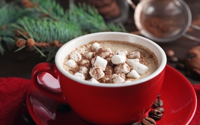 comment servir une boisson chaude de noel au chocolat et guimauves, recette chocolat chaud thermomix facile