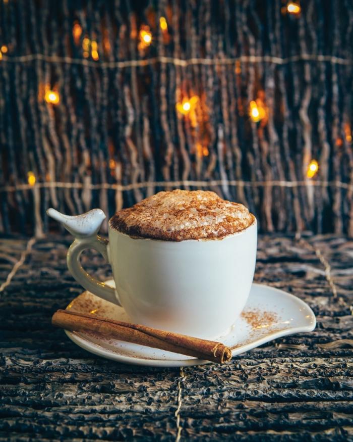 boisson au chocolat pour noel, idée recette chocolat fondu au lait parfumé à la cannelle, exemple de mug café avec oiseaux