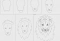 Dessins facile à faire – le guide pour les débutants du dessin