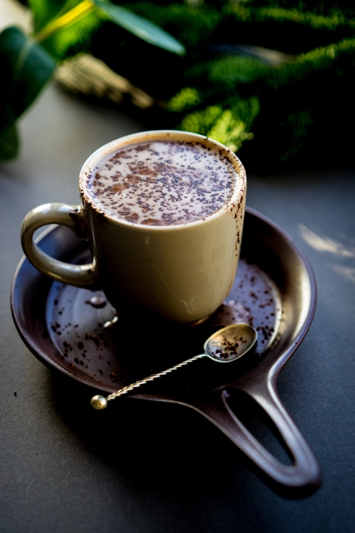 boisson chaude au lait et cacao en poudre, recette chocolat chaud facile, idée boisson pour Noel au chocolat