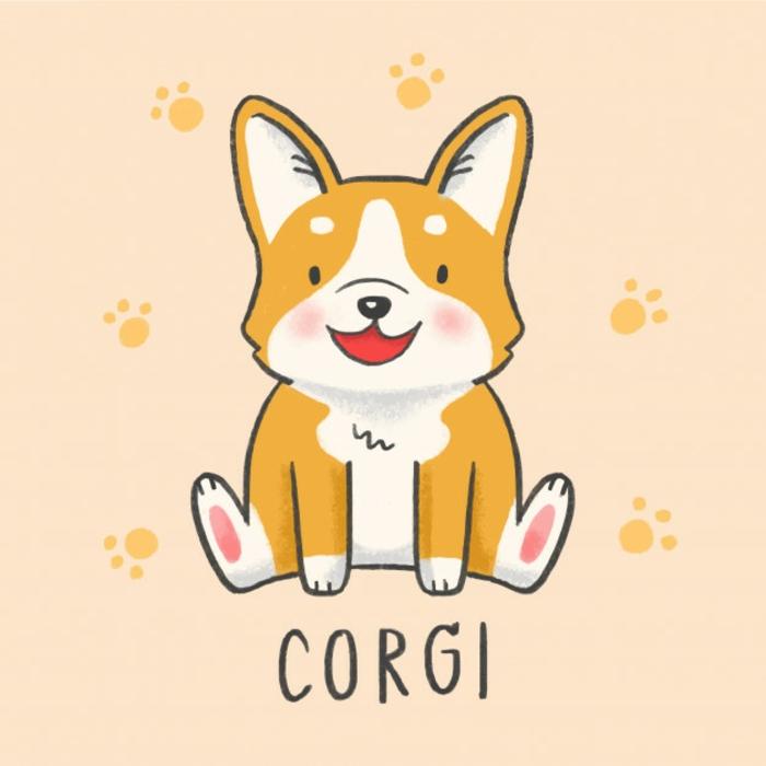 Le dessin facile a faire de corgi, coloré dessin facile a reproduire, simplicité dessin rapide et facile et vraiment adorable