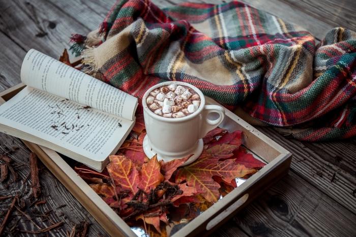 comment faire un chocolat chaud, ambiance cozy avec livre et mug boisson chaud au chocolat fondu et lait parfumé à la menthe