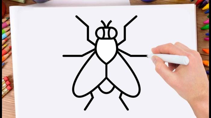 Apprendre à dessiner, mouche dessin facile a reproduire, photo pour apprendre les étapes des lignes simples a feutre