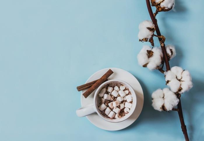 recette chocolat fondu parfumé à la cannelle, servir un chocolat chaud aux guimauves et cacao en poudre dans une tasse café