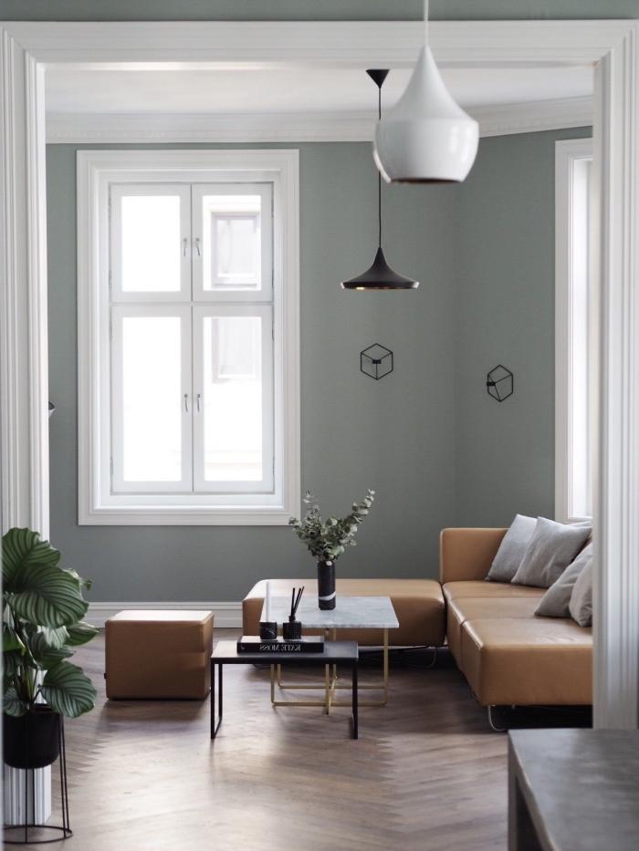 exemple de peinture grise dans un salon minimaliste avec parquet bois et plafond blanc, déco avec plantes vertes