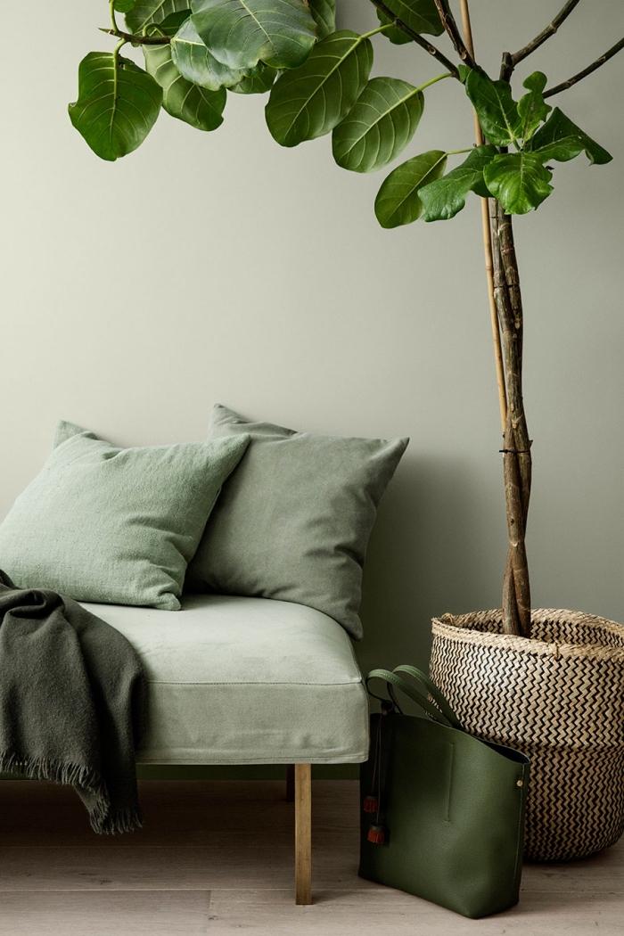 design intérieur avec murs de couleur vert de gris, déco entrée ou couloir aux murs verts avec plantes et accessoires en vert
