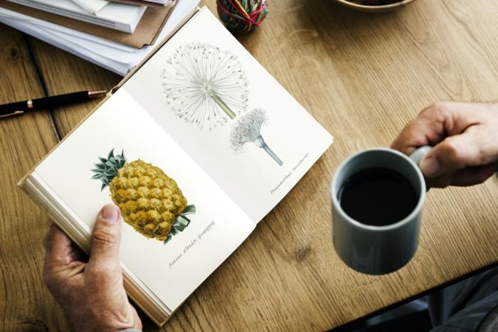 Chouette dessin facile a reproduire dessin facile a faire cours de dessin simple, cahier des esquisses