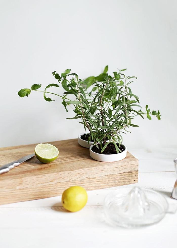 idée originale pour l'amenagement petite cuisine, une planche à découper avec des pots d'herbes aromatiques intégrés po