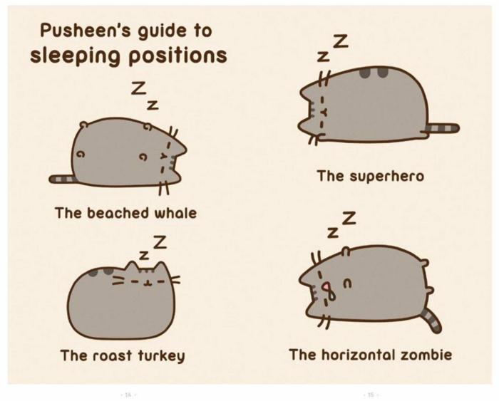 Comment dessiner un chat, pusheen dessin facile a faire, beau dessin simple a faire avec un chaton mignon qui donne le guide de dormir