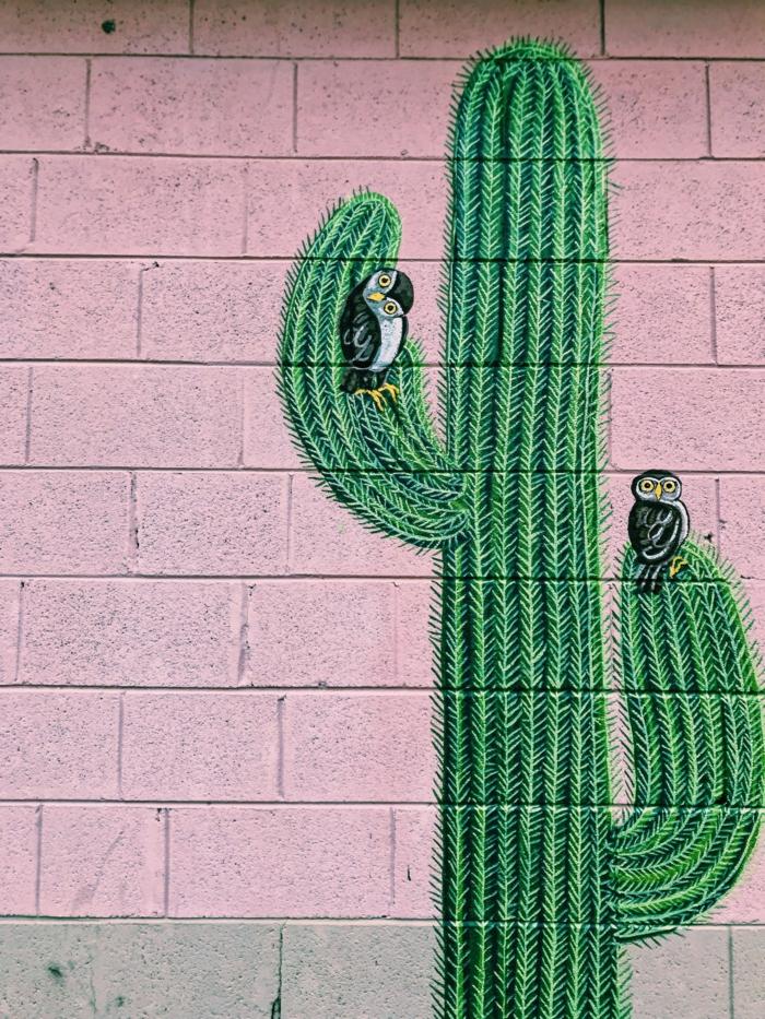Fond d écran gratuit pour ordinateur, fond d écran stylé belle idée de design oiseaux et cactus