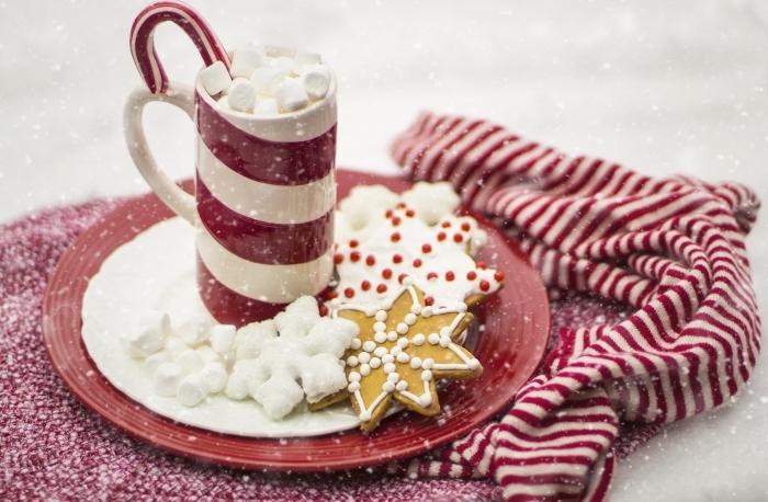 idée chocolat chaud romantique au lait, boisson chaude de Noel servie avec guimauves et sucre d'orge dans mug blanc et rouge