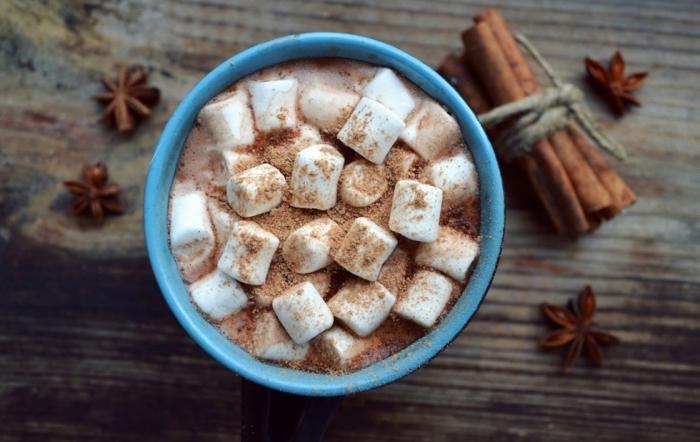 idée chocolat chaud a l ancienne, recette boisson au lait et cacao en poudre, mug rempli de boisson au chocolat et guimauves