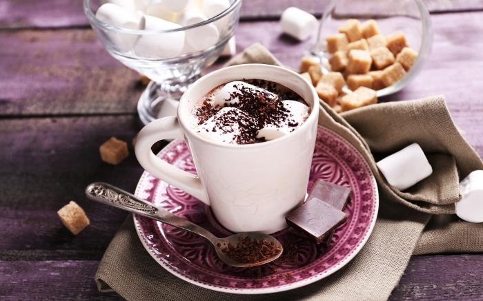 chocolat viennois préparé à la maison, exemple de chocolat fondu au lait et guimauves saupoudré de chocolat râpé