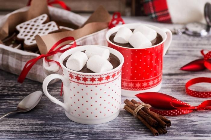 exemple de chocolat chaud épais facile, recette chocolat fondu au lait parfumé à la cannelle et garni de guimauves