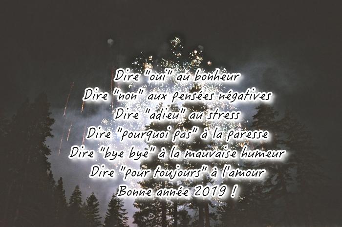 carte de voeux numérique pour nouvel an, idée souhaits nouvel an originaux, photo célébration de nouvel an avec feux d'artifice