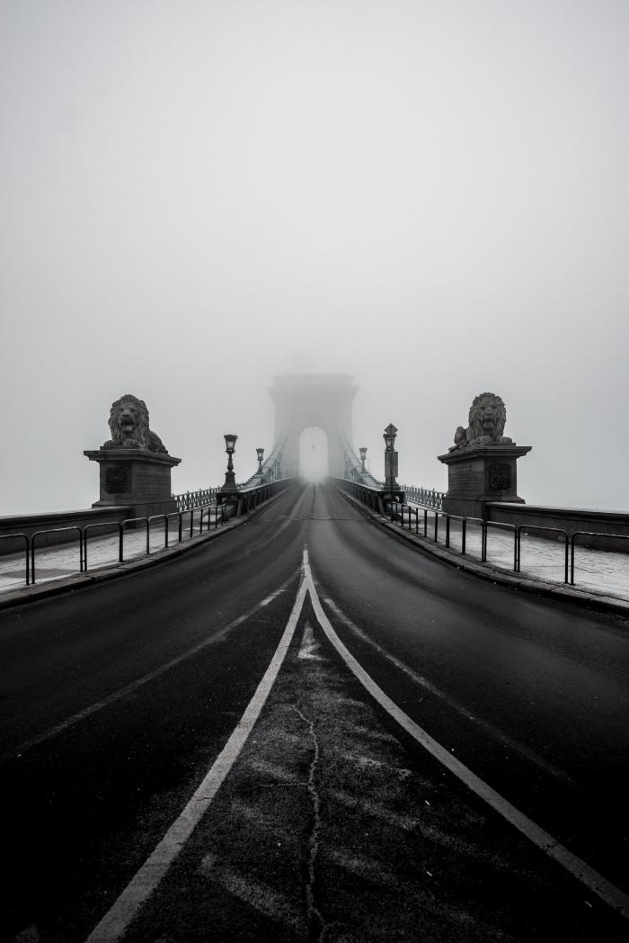 belle photo noir et blanc du pont des chaînes à budapest en hongrie et ses deux statues représentant deux lions gardiens