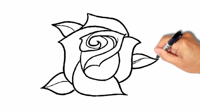 Image dessin de chien dessins facile à faire dessin noir et blanc crayon comment dessiner une rose