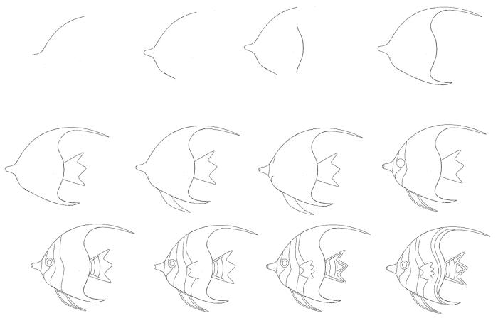 idée de dessin animal de mer, comment dessiner au crayon une poisson, technique dessin facile pour débutant