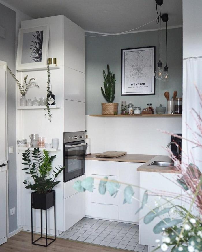 aménager une petite cuisine en blanc et gris, lampes ampoules suspendues, évier, comptoir de bois, four encastrable; plantes vertes, petites étagères blanches