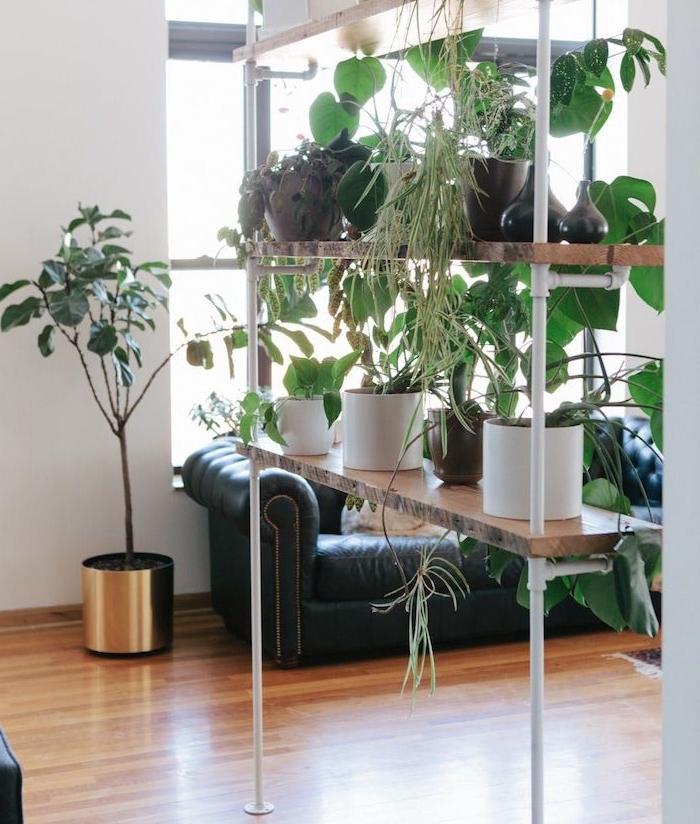 étagère bois et blanc surchargée de pots de plantes vertes dans un salon avec parquet bois clair, canapé noir, cloison de séparation mur végétal