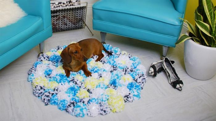 salle de séjour, deux fauteuils bleus, pot de fleurs, paire de chaussures féminines, tapis pompon en bleu et jaune