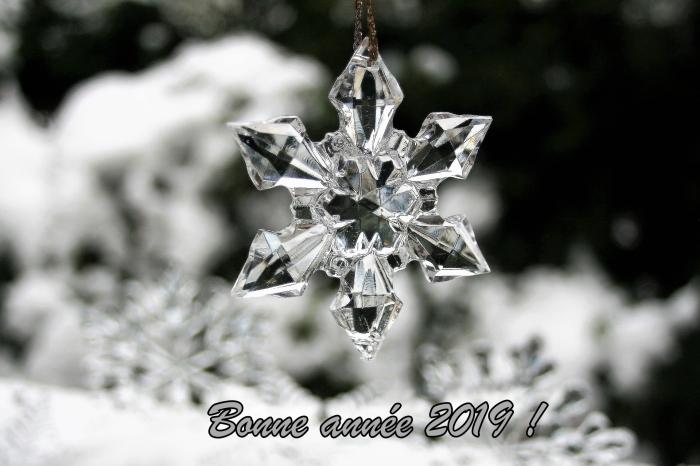 photo hiver avec mots bonne année, photographie collier à design flocon de neige en verre, carte numérique nouvel an