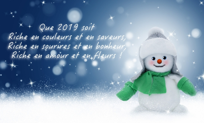 images nouvel an gratuites, illustration avec mignon bonhomme de neige et voeux nouvel an 2019, souhaits nouvel an originaux