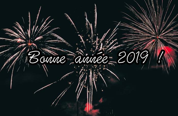 photo bonne année 2019, fond d'écran nouvel an 2019, photo fête lumières avec spectacle feux d'artifice