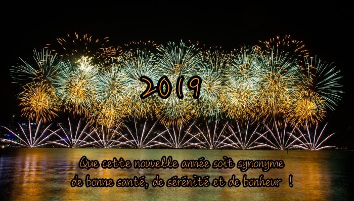photo fête de lumières nouvel an, belles images bonne année 2019, carte de bonne année 2019 avec feux d'artifice