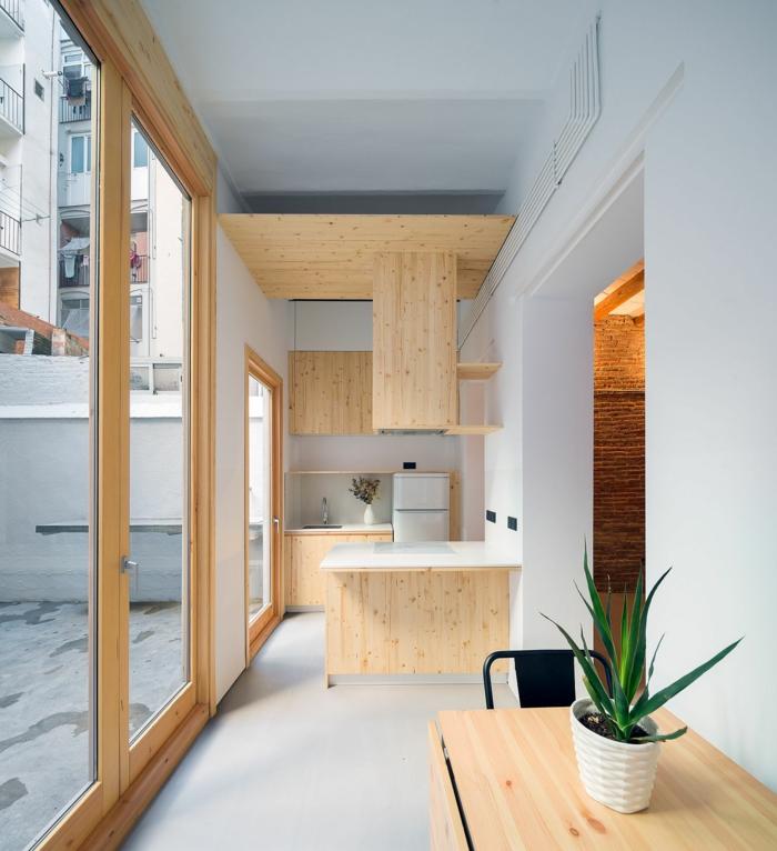 cuisine en gris et bois aux murs vitrés, pot de fleur, aménagement petit espace, cuisine style minimaliste