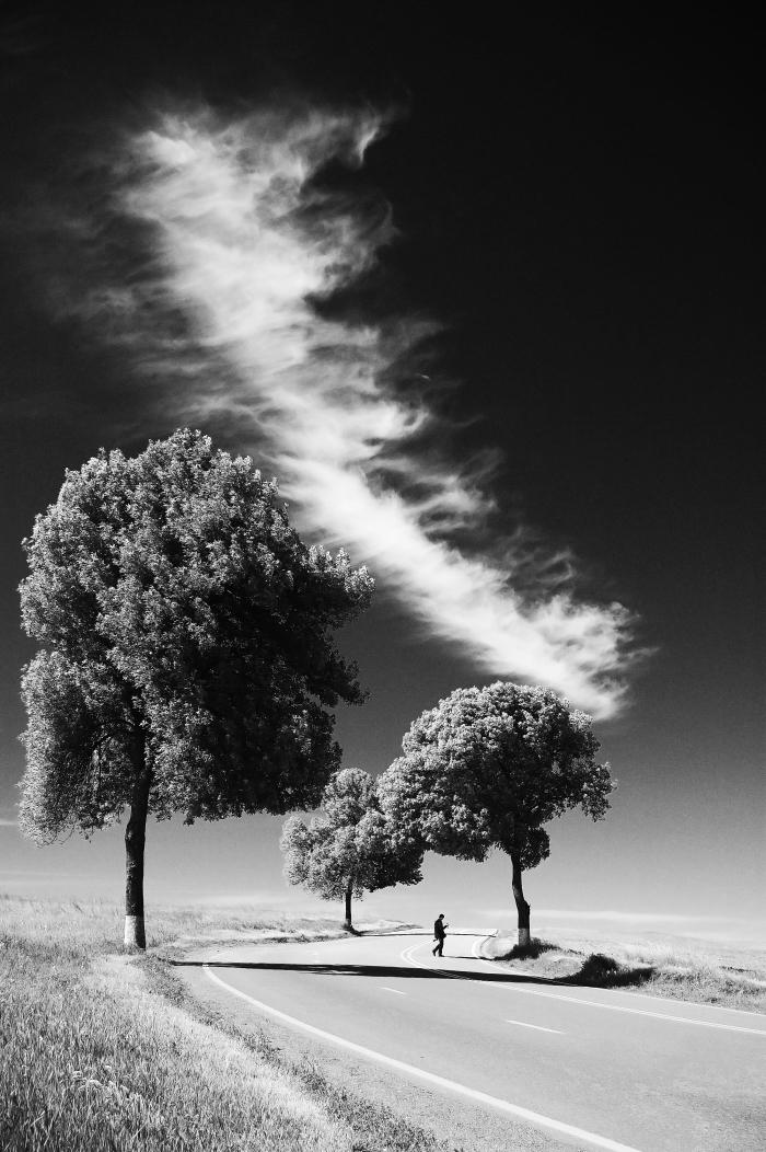 1001   images inspirantes pour d u00e9couvrir la beaut u00e9 du paysage noir et blanc