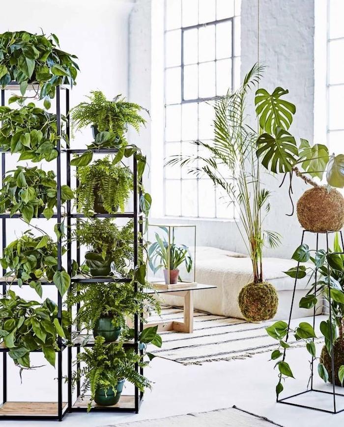 mur végétal de séparation avec des pots de plantes rangés sur étagères, plantes vertes d appartement dans une chambre à coucher blanche avec lit blanc