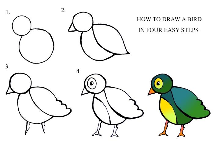 réaliser un dessin facile d'oiseau pas à pas, tutoriel comment dessiner un oiseau facile
