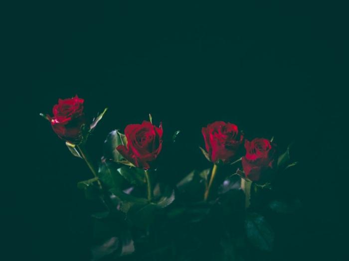1001   id u00e9es d u0026 39 image romantique pour partager son amour